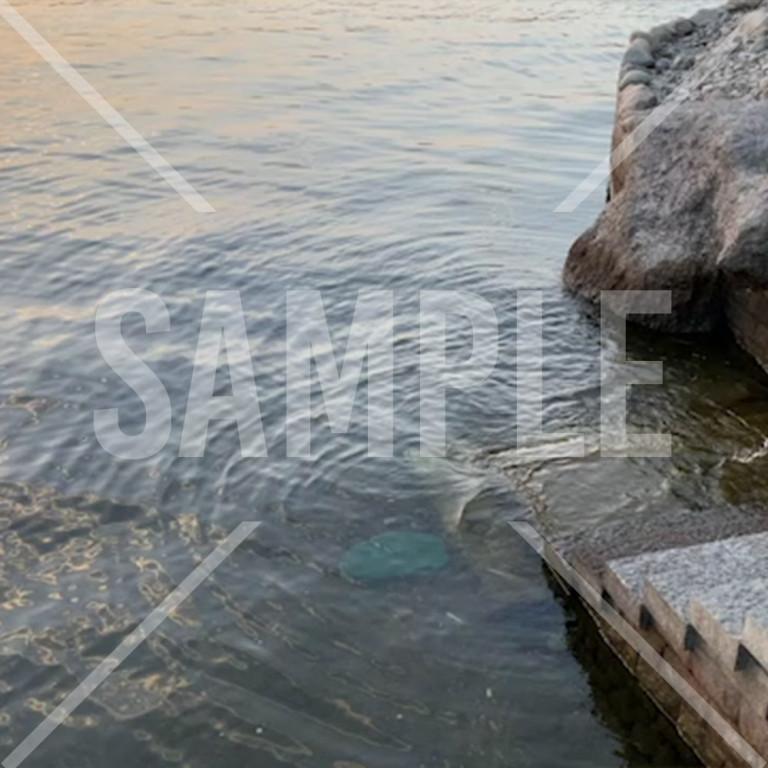 杭州千島湖の湖水