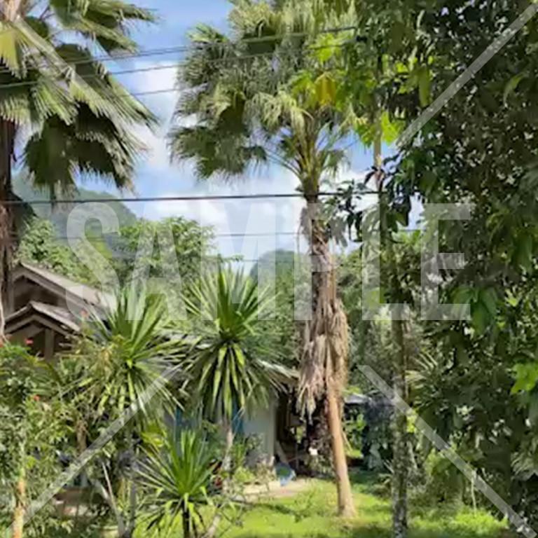 タイのChangwat Phangngaの村